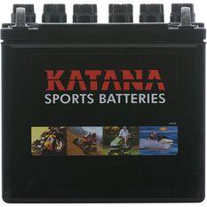 C12N24-4 Katana Lawn & Garden Battery