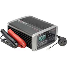 CHARGER 2-25A 12V WORK SHOP, , scanz_hi-res