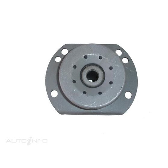 HYDRAULIC - COMMODORE VT-VY STRUT - CHASSIS BUSH, , scanz_hi-res