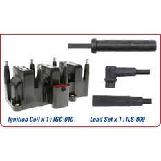 FORD IGNITION COIL/LEAD KIT