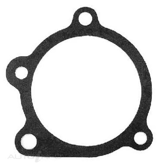 WATER PUMP GASKET OHC FORD