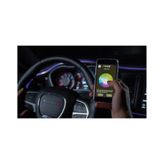 """Type S Interior LED 48"""" Plug & Glow Deluxe Kit, , scanz_hi-res"""