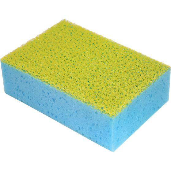 Bug Sponge, , scanz_hi-res