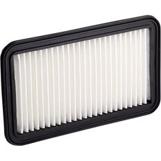 Ryco Air Filter A1629, , scanz_hi-res