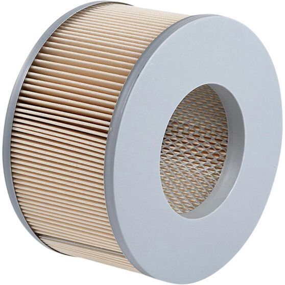 Ryco Air Filter A1438, , scanz_hi-res
