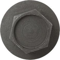 Tridon Oil Drain Plug TDP010, , scanz_hi-res