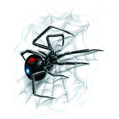 Hot Stuff Sticker - Spider with Web, Vinyl, , scanz_hi-res