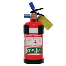 SCA Fire Extinguisher - 1kg, Recreational, Plastic Mounting Bracket, , scanz_hi-res